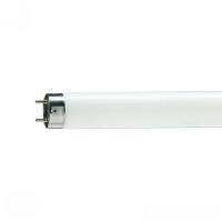 Lâmpada Fluorescente Tubular T8