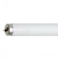 Lâmpada Fluorescente Tubular T10